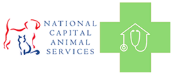 National Capital Animal Services